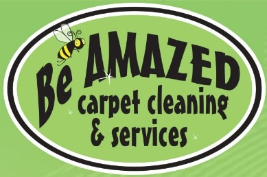 Carpet Cleaning Companies and Services